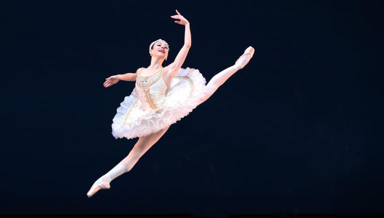 spring special het nationale ballet dansvoorstelling streams