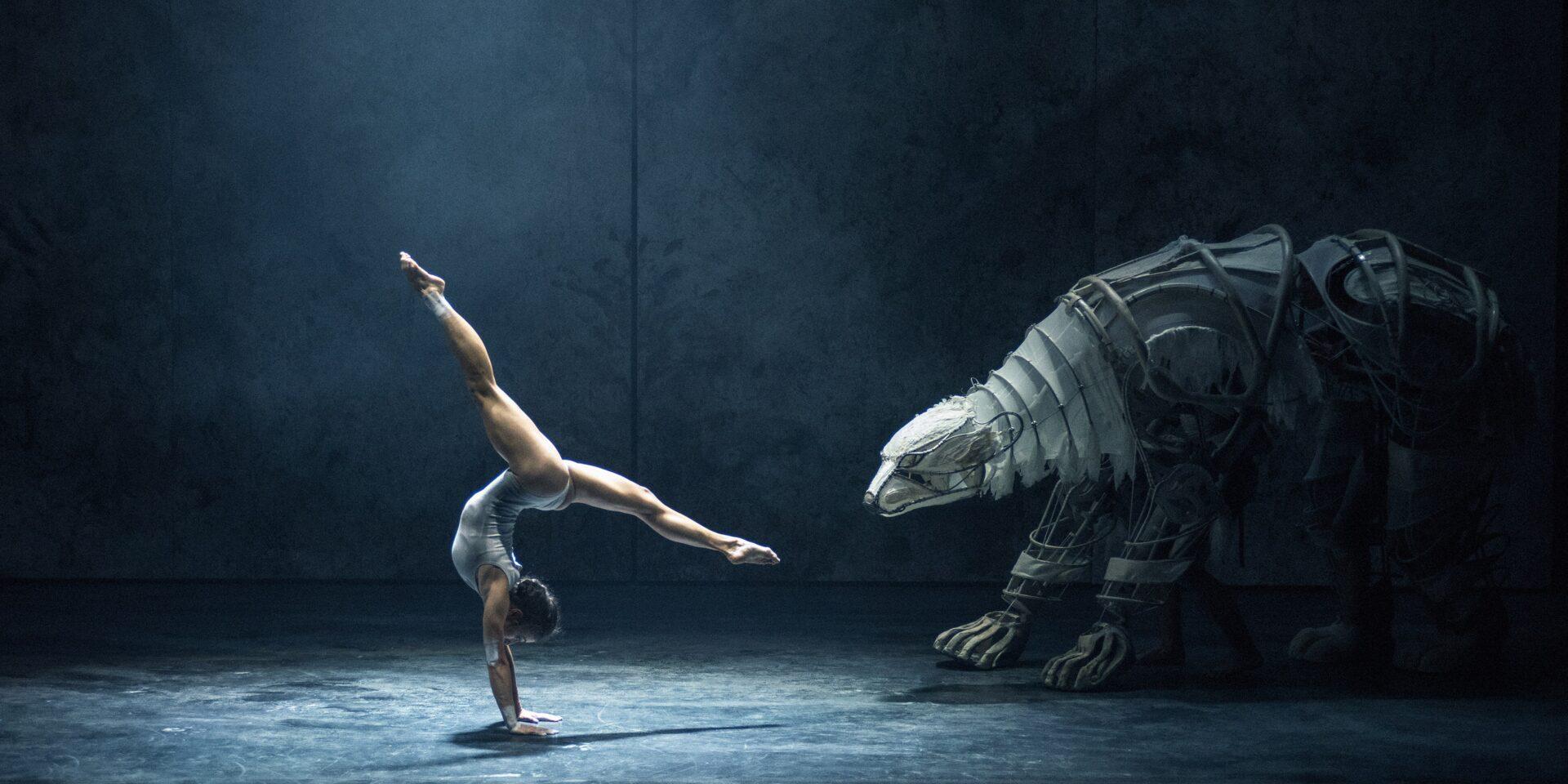 cultura nova heerlen dans en theaterfestivals
